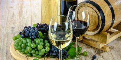 Nejlepší víno – bílé, červené, růžové, portské, šumivé
